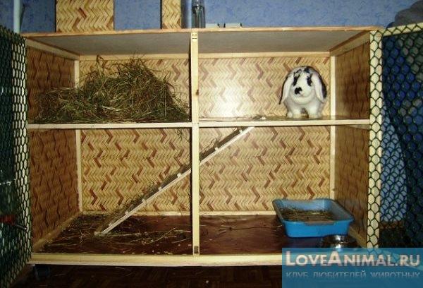 Клетка декоративных для кроликов своими руками