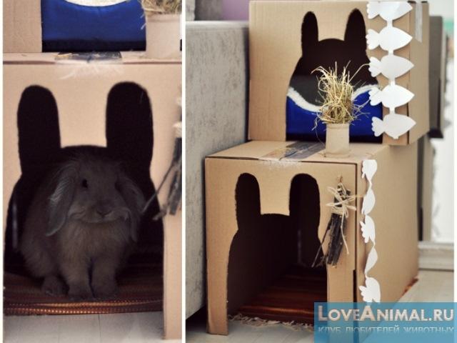 Домик для кролика из фанеры